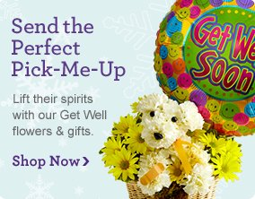 Get Well Flowers & Gifts Shop Now
