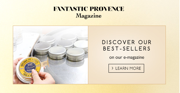 Fantastic Provence