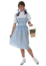 Dorothy Long Dress Costume