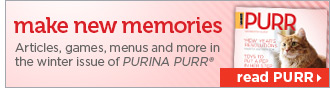 Make New Memories | Read PURR