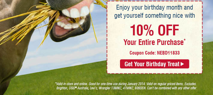 Enjoy Your Birthday Month And Get Yourself Something Nice, 10% Off Your Birthday Order