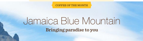 COFFEE OF THE MONTH. Jamaica Blue Mountain. Bringing paradise to you.