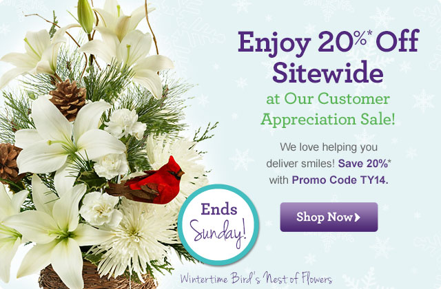 Enjoy 20% Off Sitewide at Our Customer Appreciation Sale!   We love helping you deliver smiles! Save 20%* on the next one you send with Promo Code TY14.  Shop Now