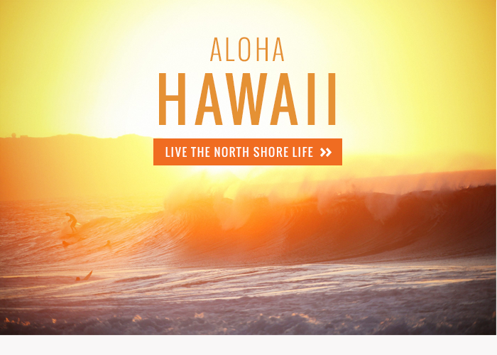 Aloha hawaii2