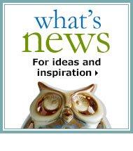 Dynamic-Box-WhatsNews