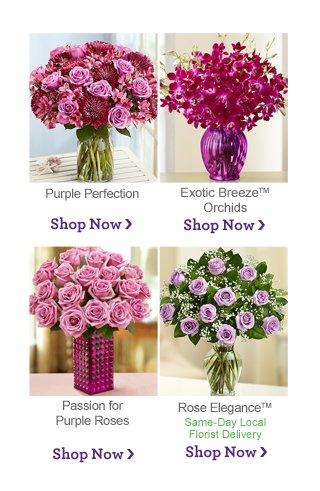 Shop Purple Shop Now