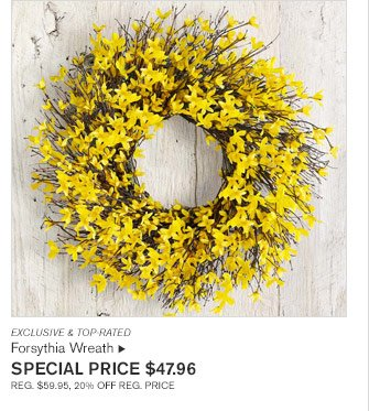 EXCLUSIVE & TOP-RATED - Forsythia Wreath  - SPECIAL PRICE $47.96 REG. $59.95, 20% OFF REG. PRICE