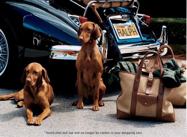 We've Kept Your Shopping Bag Safe