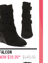 Shop Falcon