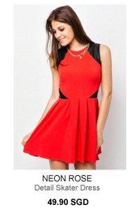 NEON ROSE Detail Skater Dress