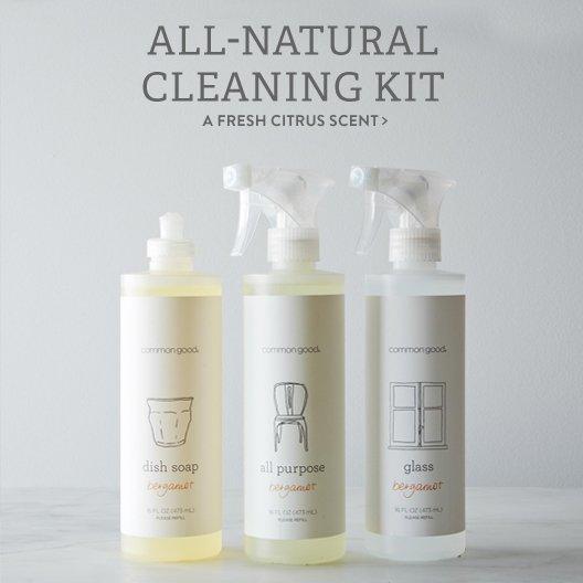 Bergamont Cleaning Kit