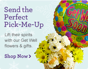 Send the Perfect Pick-Me-Up Lift their spirits with our Get Well flowers & gifts. Shop Now ›
