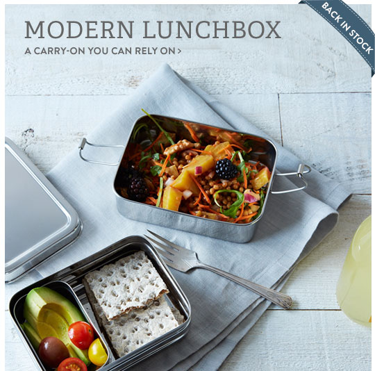 Modern Lunchbox