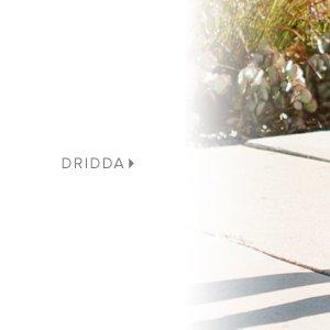 DRIDDA