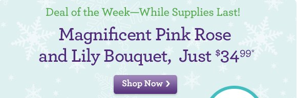 Magnificent Pink Rose and Lily Bouquet, Just $34.99*!  Deal of the Week - While Supplies Last!  What happens when we gather hot pink roses and soft pink lilies into the same bouquet? You get a bright & beautiful gift, perfect for delivering smiles!  Shop Now