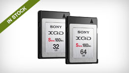 Sony QDN32/T XQD S-Series and N-Series Memory Cards
