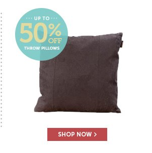 Up to 50% Off Throw Pillows - Shop Now!