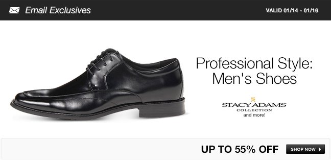 Professional Style: Mens Shoes