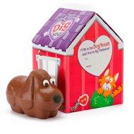 chocolate-puppy-in-valentine-gift-box-130721