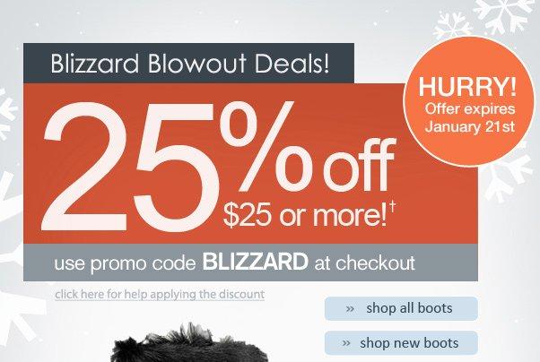 25% Off $25+! Blizzard Blowout Deals TODAY!