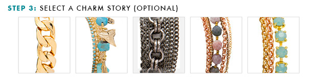 Step 3: Select a Charm Story (Optional)