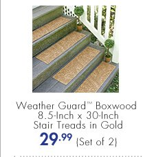 Weather Guard™ Boxwood 8.5-Inch x 30-Inch Stair Treads in Gold 29.99 (Set of 2)