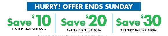 Hurry! Offer Ends Sunday... Save up to $30 on purchases of $100+