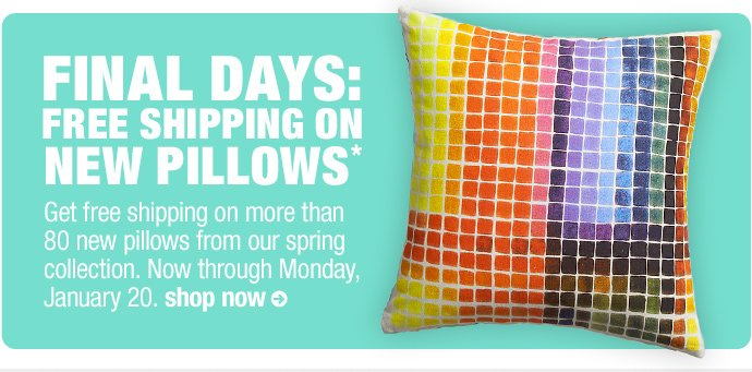 final days: free shipping on new pillows*