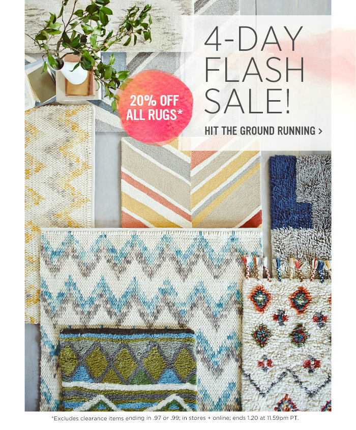4-Day Flash Sale! Hit the ground running. 20% off all rugs*