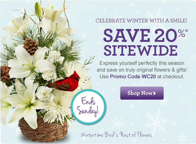 Celebrate Winter with a Smile! 20%* OFF Sitewide  Express yourself perfectly this season and save on truly original flowers & gifts! Use Promo Code WC20 at checkout.  Shop Now