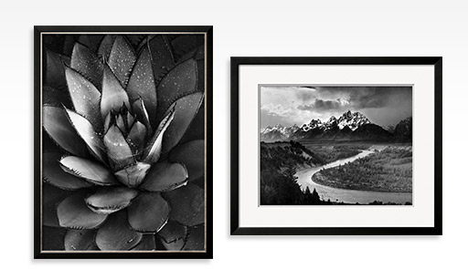 CENTURY PLANT Framed By: Brett Weston; TETONS AND THE SNAKE RIVER, GRAND TETON NATIONAL PARK, C.1942 By: Ansel Adams