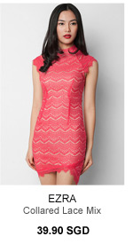 EZRA Collared Lace Mix Dress