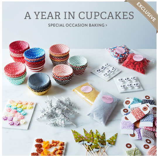 A Year in Cupcakes