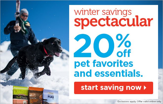 20% off pet favorites and essentials