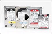 WD Hard Drive Solutions