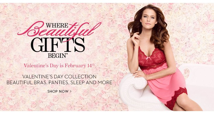 WHERE BEAUTIFUL GIFTS BEGIN.   Valentine's Day Is February 14th.  Valentine's Day  Collection.  Beautiful Bras, Panties, Sleep And More.  SHOP NOW