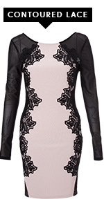 Long Sleeve Lace Silhouette Bodycon Dress