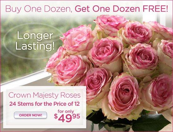 BOGO Corwn Majesty Roses
