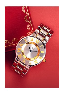 Gold & Stainless Watch