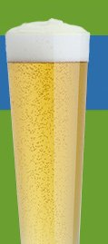 cold 1 beer glass 3.16 reg 3.95