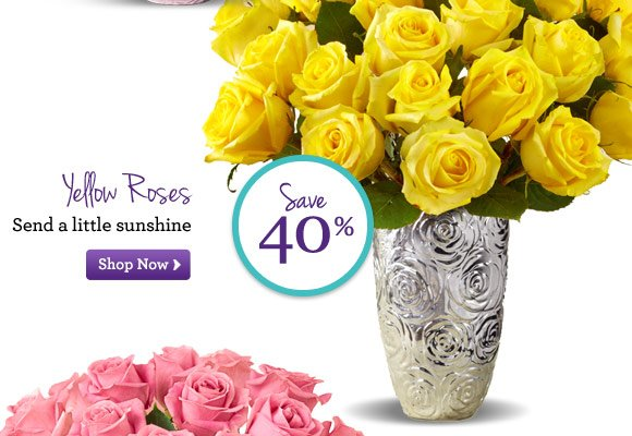 Yellow Roses Send a little sunshine Shop Now