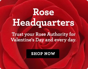 Rose Headquarters Trust your Rose Authority for Valentine's Day and every day. Shop Now