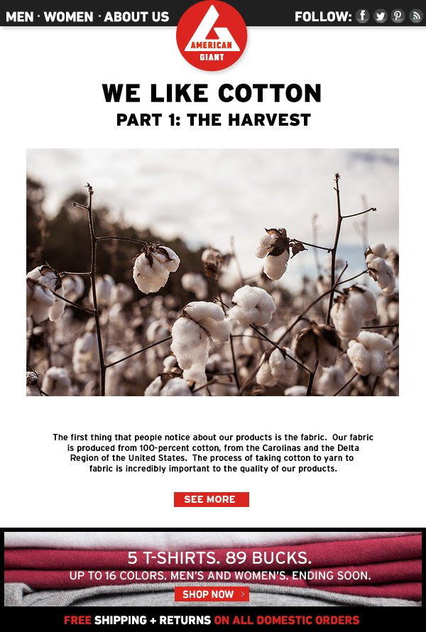 We Like Cotton. Part One: The Harvest