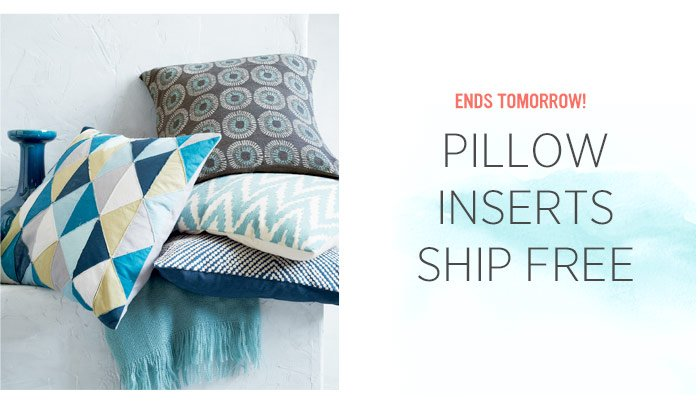 Ends Tomorrow! Pillow inserts ship free