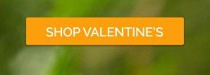 Shop Valentine's