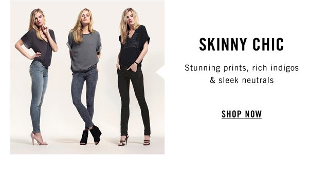 Skinny Chic - Shop Now