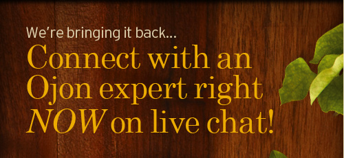 We are bringing it back Connect with our experts right NOW on live chat