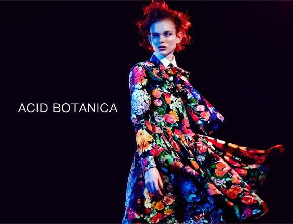 Acid Botanica