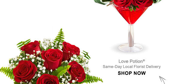 Valentine's Gifts Under $50 Shop Now