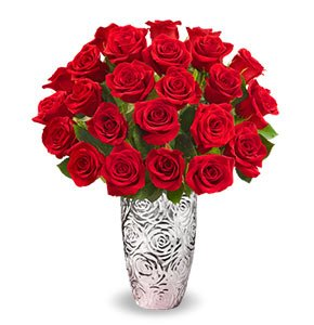 Two Dozen Red Romance Roses Shop Now